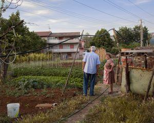 Garden, Anagni.