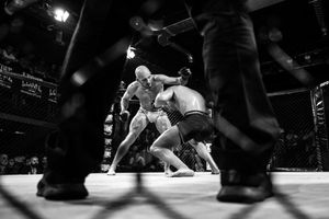 """The MMA stars night in Milan took place at the Teatro Principe, where directorLuchinoVisconti filmed """"Rocco e i suoi fratelli"""". Afterseveral yearsof beingclosed, thetheatreopened again in 2015. Venator Fighting Championship started in the same year."""