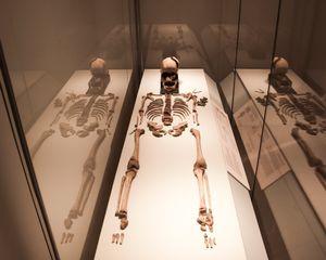 Skeleton of teenage Anglo-Saxon girl