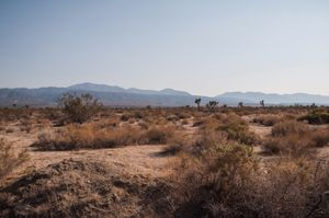 California. © Kate Vredevoogd