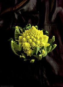Health food 14 (cauliflower)