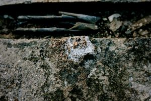 The Tininess of the Ruins No.80