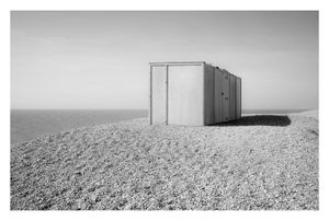 Dungeness #12