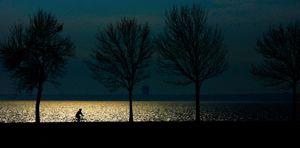 Bicycling Along Lake Michigan in Milwaukee - © Adel Korkor