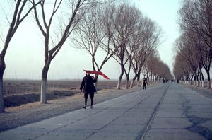 "1967. On the road from Tianjin to Pekin, the ""long walks"" of the red guards. © Solange Brand"