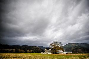 Farmstead, Tillamook County