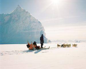 An arctic ride.