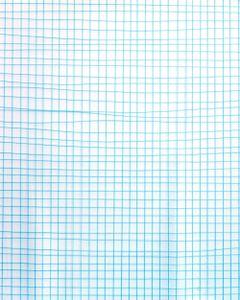Graph Paper Decoy, 2016