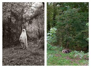 Girl with fur in woods & Sleeping bear