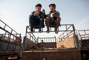 Kashgar, China: Following successful sales at the cattle market the happy men are resting on their lorry. © Matjaz Krivic