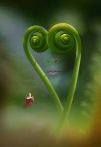 Nature in love