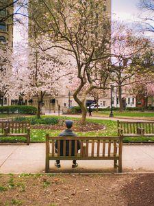Solitary springtime