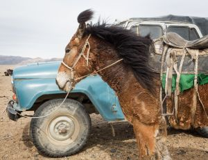 "Altantsögts, Mongolia, 2015. From the series ""The Outsider."""