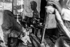Chai Vendor, Varanasi