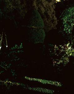 Gardens Memos#02