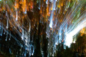 Lights Descending
