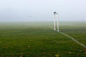 London Fog Watch