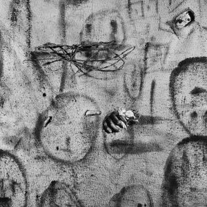"""Fate, 2008. From the series """"Boarding House"""" © Roger Ballen"""