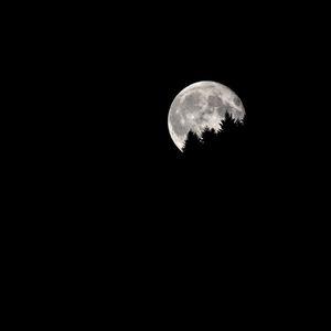 Ridge shape unveiled by moonlight