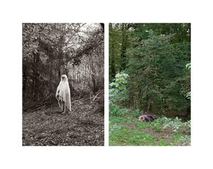 """Girl with fur in woods & Sleeping bear"""