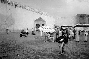 Lahdim square, Meknès, Morocco