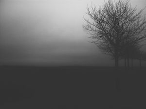 germany, foggy