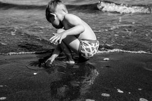 The Beach Comber