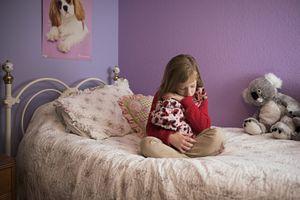 Audrey and Ladybug Blanket