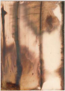 "Untitled [Agfa-Gevaert Portriga-Rapid PRW 118 Soft-White Filigran Semi-Matt Grade 2 Double Weight Paper], 2014, unique silver gelatin chemigram, 7.5"" x 5.25"""