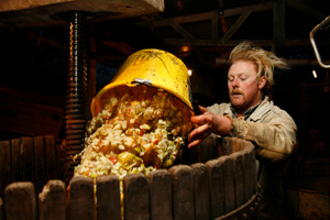 Filling the cider press with ground apples