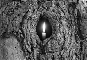 Tree Candle 2