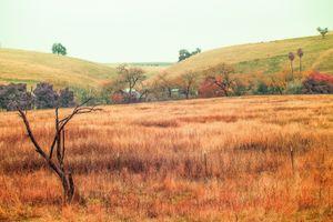 A Farming Village in Hyper-Infrared
