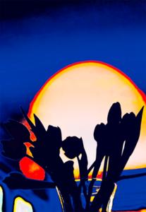 SunsetSeekers