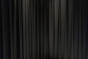 The Curtain (Readheadedborderhopper)