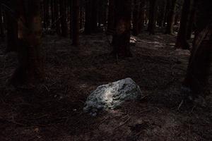 A stone