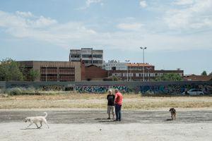 Dogspace