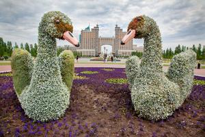 Swan Fake, Astana, Kazakhstan