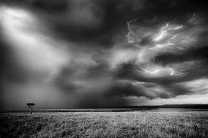 Masai Mara Storm