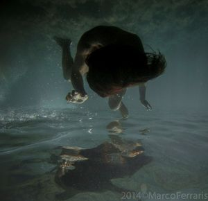 © Marco Ferraris