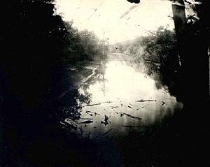Untitled, 1998, (Deep South #9). © Sally Mann