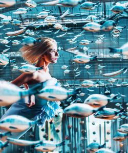Dreams of the sea in a big city