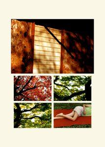 N°62 - Passage - Vert, le rouge - 2008.