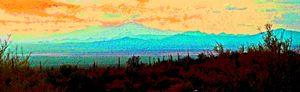 Sonoran Sunset