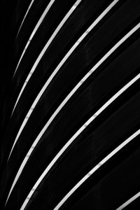lines of shadow #8