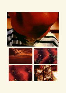 N°79 - Passage Rouge pomme - 2008.