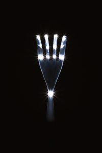 The Fork #3