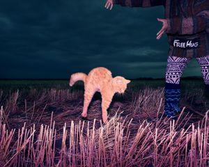 Cat during a Levitation telekinesis and free hug, Saskatchewan, Canada, 2014