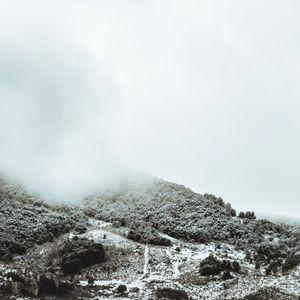 Trasposizione D'Inverno 4