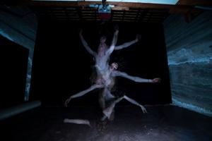 human as tree