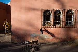 Taroudant. Morocco.